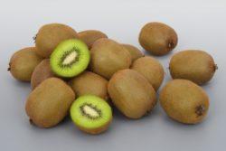 キウイフルーツ ニュージーランド